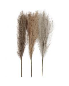 Pampas gress, L: 50 cm, lys pulver, lys brun, lys grå, 3 stk./ 1 bunt