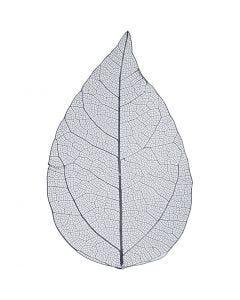 Skjelettblad, L: 6-8 cm, blå, 20 stk./ 1 pk.