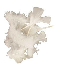 Dun, str. 7-8 cm, hvit, 50 g/ 1 pk.