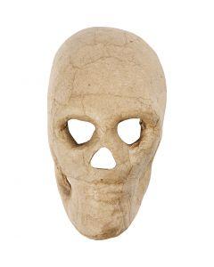Kranium, H: 13 cm, 1 stk.