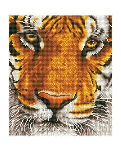 Diamant Dotz, Tiger, str. 36x42 cm, 1 pk.