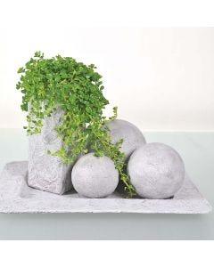 Emner malt med betongpasta