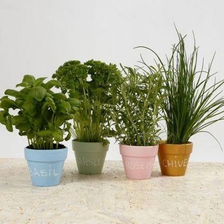 Dekorerte urtepotter til krydderurter