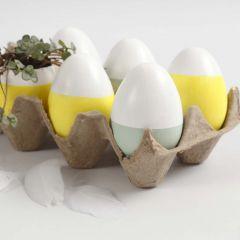 Malte egg - og egg med beplantning