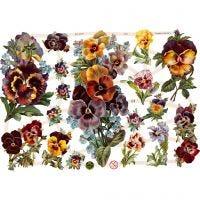 Glansbilder, blomster, 16,5x23,5 cm, 3 ark/ 1 pk.