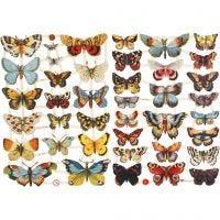 Glansbilder, sommerfugler, 16,5x23,5 cm, 2 ark/ 1 pk.
