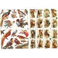 Glansbilder, fugler, 16,5x23,5 cm, 2 ark/ 1 pk.