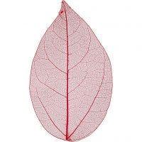 Skjelettblad, L: 6-8 cm, rød, 20 stk./ 1 pk.