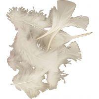 Dun, str. 7-8 cm, hvit, 500 g/ 1 pk.