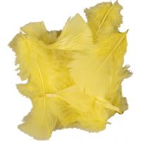 Dun, str. 7-8 cm, gul, 500 g/ 1 pk.