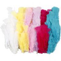 Dun , L: 11-17 cm, ass. farger, 144 bunt/ 1 pk.