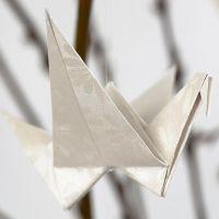 Fugl brettet av papir