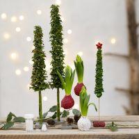 Juletrær og juledekorasjoner av levende grønt pyntet med mini glasskuler